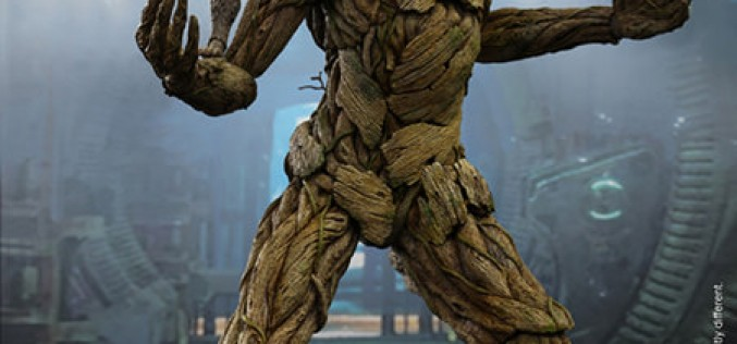 Hot Toys Guardians Of The Galaxy Rocket & Groot Sixth Scale Figures Pre-Orders Available