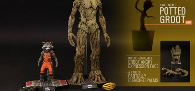 Hot Toys Guardians Of The Galaxy Rocket & Groot Sixth Scale Figure Set Update
