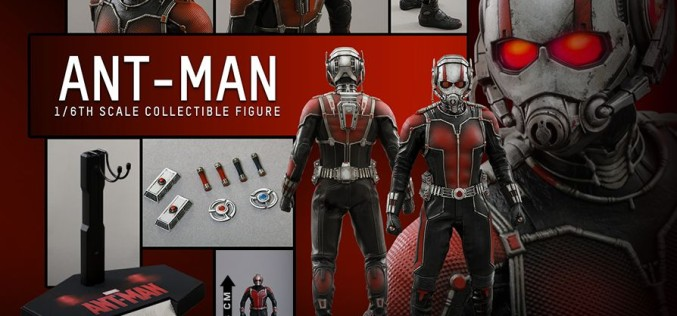 Hot Toys Ant-Man Sixth Scale Figure Pre-Orders