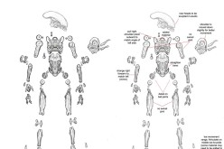 NECA Alien Vs. Predator 2-Pack Articulation Of Xenomorph Update