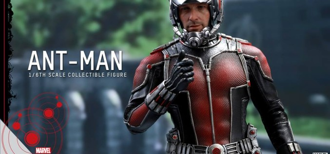 Hot Toys Ant Man Sixth Scale Figure Unmasked Head Sculpt