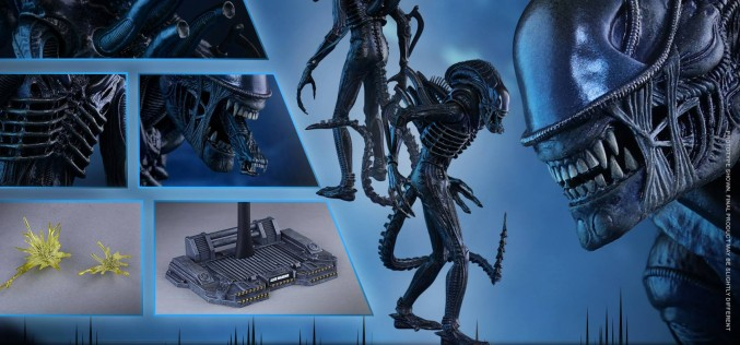 Hot Toys Aliens – Alien Warrior Sixth Scale Figure Pre-Orders