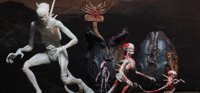 NECA Toys Alien: Covenant 7″ Figures & Creature Pack On Amazon & eBay Storefront