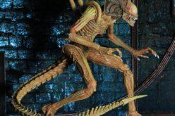 NECA Toys SDCC 2017 Exclusive – Sewer Mutation Warrior Alien